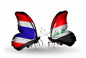 picture of iraq  - Two butterflies with flags on wings as symbol of relations Thailand and Iraq - JPG