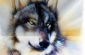 picture of werewolf hunter  - Wolf head illustration - JPG