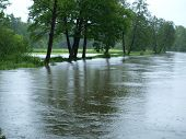 pic of flood  - flood swollen river  - JPG