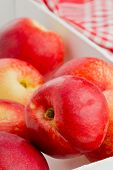pic of uncut  - Group of whole uncut white nectarines in white wooden crate - JPG