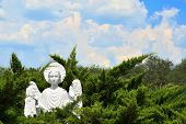 stock photo of angel-trumpet  - Christian stone marble Angel in forest at church - JPG