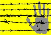 barbed wire and hand vector