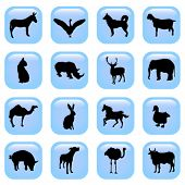 pic of farm animals  - animal vector buttons - JPG