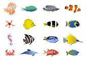picture of sea life  - Vector illustration of set of sea creatures - JPG