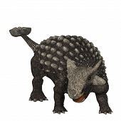 stock photo of behemoth  - Ankylosaurus was an armored dinosaur from the Creataceous Period of Earths history - JPG