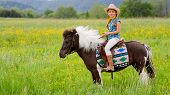 picture of cowgirl  - Horseback riding  - JPG