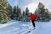 Woman cross country skiing on a sunny winter morning in Swiss Alps, Thyon, les collones, Valaise can poster
