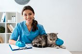 Young Veterinarian Smiling At Camera While Writing On Clipboard Near Tabby Scottish Straight Cat poster