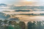 Tranquil Mountain And Forest Scenery In Foggy Morning Sunrise poster