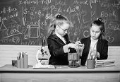 Genius Kids Work On Own Chemical Theory. Basic Knowledge Of Chemistry. Pupils Cute Girls Use Test Tu poster