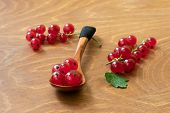 Small Wooden Spoon Full Of Juicy Red Current Berries On Wooden Table. Freshly Picked Ripe Red Curran poster