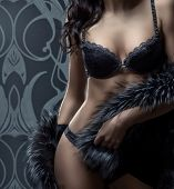 stock photo of cabaret  - Fashion shoot of beautiful woman in luxury lingerie - JPG