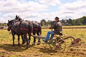stock photo of horse plowing  - Man plowing the field with his draft horses in a rural town - JPG