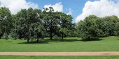 picture of kensington  - The Kensington Gardens and Hide Park - JPG
