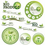 Set Of Green Bio And Organic Badges And Labels