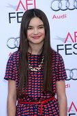 LOS ANGELES - NOV 9:  Landry Bender at the AFI FEST