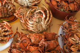 stock photo of cooked crab  - Many plates of seafood on the table - JPG