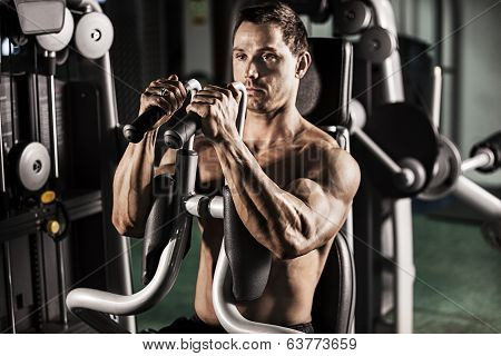 Male Bodybuilder Doing Workout poster