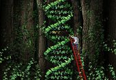 stock photo of gene  - Gene therapy DNA helix concept with a medical genetics specialist doctor on a ladder climbing a plant that represents part of the human chromosomes anatomy as a biotechnology metaphor for genetic testing and repair - JPG