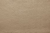pic of pale skin  - abstract background from the painted texture of skin and leather fabric brown color - JPG
