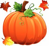 stock photo of fall leaves  - Illustration of fall leaves and a pumpkin - JPG