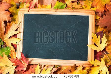 Chalkboard  On Autumnal Leaves poster