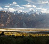 stock photo of jammu kashmir  - Nubra valley  - JPG