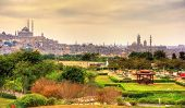 Постер, плакат: View Of The Citadel With Muhammad Ali Mosque From Al azhar Park Cairo Egypt
