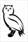 foto of owls  - Vector illustration  - JPG