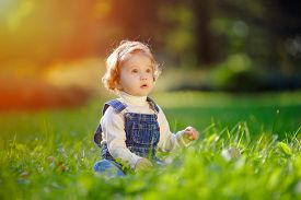 image of eat grass  - Small child in jeans suit sitting on the grass in the sunshine - JPG