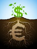 foto of bine  - Plant roots and tuber in shape of money symbol - JPG