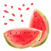 picture of watermelon slices  - Watercolor watermelon slice vector illustartion - JPG