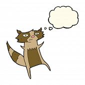 pic of raccoon  - cartoon raccoon with thought bubble - JPG