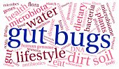 picture of water bug  - Gut Bugs word cloud on a white background - JPG