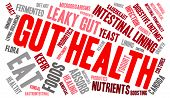 image of enzyme  - Gut health word cloud on a white background - JPG
