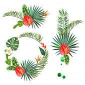 stock photo of tropical plants  - Hand drawn watercolor tropical plants  - JPG