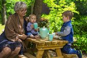 stock photo of babysitting  - Grandmother having tea with her grandchildren in the garden - JPG
