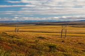 stock photo of chukotka  - Colorful autumn Chukotka tundra - JPG