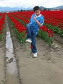 stock photo of mayhem  - a young boy trying to stomp on a tulip - JPG