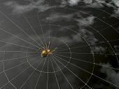 stock photo of spider web  - gold spider and global network  - JPG