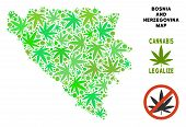 Royalty Free Cannabis Bosnia And Herzegovina Map Collage Of Weed Leaves. Concept For Narcotic Addict poster