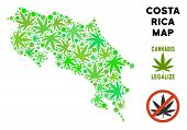 Royalty Free Cannabis Costa Rica Map Collage Of Weed Leaves. Template For Narcotic Addiction Campaig poster
