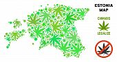 Royalty Free Cannabis Estonia Map Composition Of Weed Leaves. Template For Narcotic Addiction Campai poster