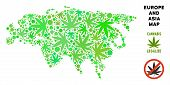 Royalty Free Marijuana Europe And Asia Map Composition Of Weed Leaves. Template For Narcotic Addicti poster