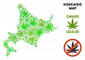 Royalty Free Cannabis Hokkaido Island Map Mosaic Of Weed Leaves. Template For Narcotic Addiction Cam poster