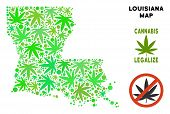 Royalty Free Cannabis Louisiana State Map Collage Of Weed Leaves. Concept For Narcotic Addiction Cam poster