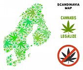 Royalty Free Marijuana Scandinavia Map Collage Of Weed Leaves. Concept For Narcotic Addiction Campai poster