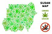 Royalty Free Cannabis Sudan Map Composition Of Weed Leaves. Concept For Narcotic Addiction Campaign  poster