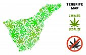 Royalty Free Cannabis Tenerife Spain Island Map Composition Of Weed Leaves. Concept For Narcotic Add poster
