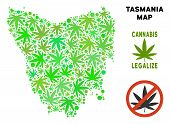 Royalty Free Cannabis Tasmania Island Map Composition Of Weed Leaves. Concept For Narcotic Addiction poster